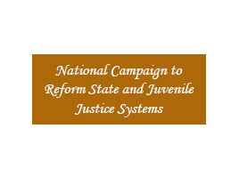 National Campaign to Reform State and Juvenile Justice Systems